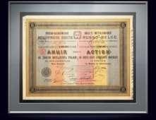 Акция Русско-Бельгийского металлургического общества в 250 рублей, 1895