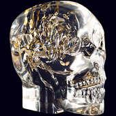 Декоративный череп Berd Vaye «Lost in Time» малый