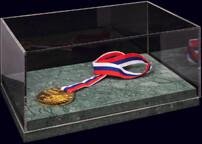 Золотая медаль чемпионата России по футболу 2018-2019